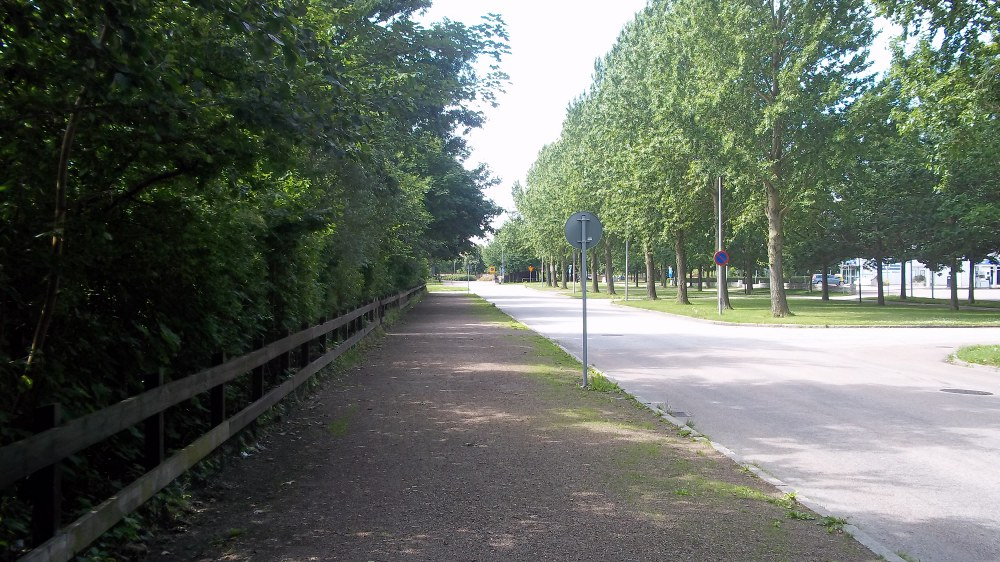 Auf dem Weg vom Stadion ins Stadtzentrum gibt's extrem viel Grün...